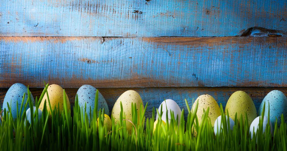 Happy Easter from HIPDesign
